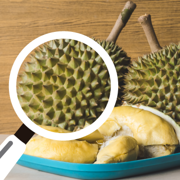 Pungent Durian Mystery