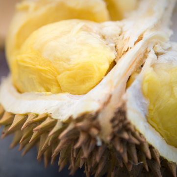 Benefits of eating durian the king of fruits