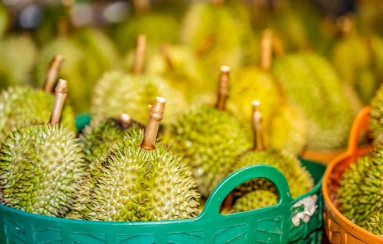 Favourite Durian in Singapore