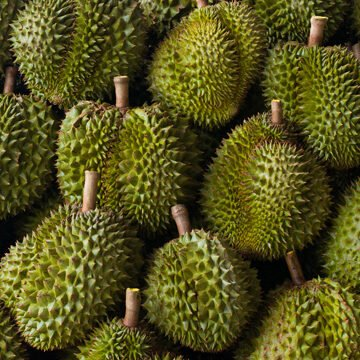Durian Singapore