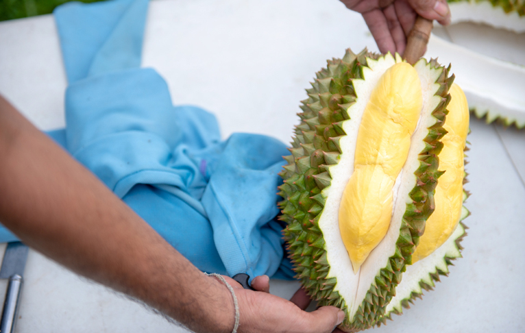 Quality Durian